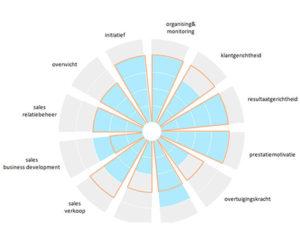 Company Stars - online assessment, persoonlijkheidstest, geschiktheidsonderzoek, competentietest